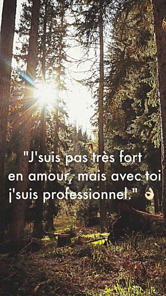 « J'suis pas très fort en amour, mais avec toi je suis professionnel. »