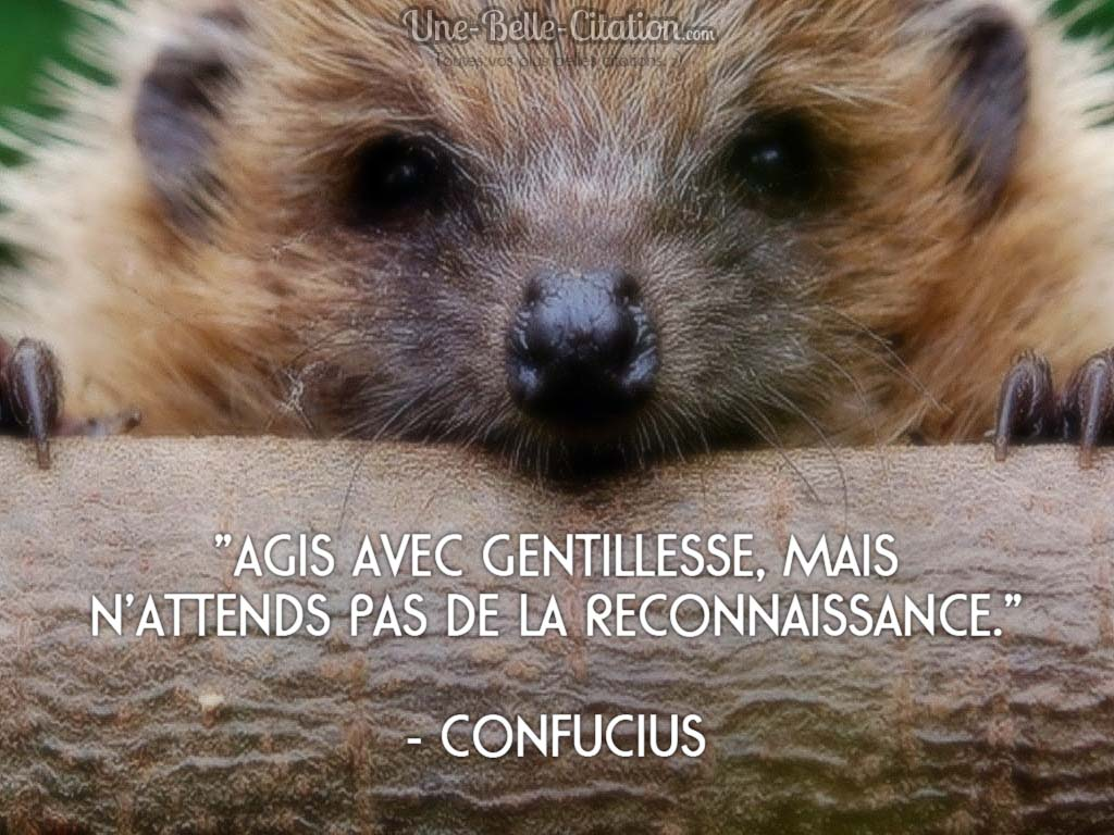 «Agis avec gentillesse, mais  n'attends pas de la reconnaissance.»  – Confucius