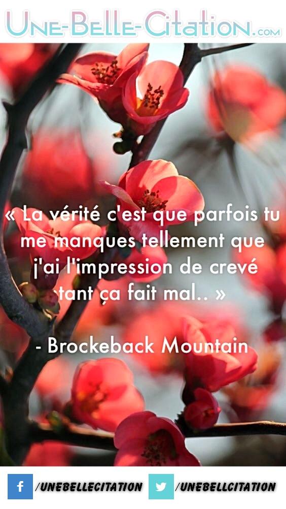 «La vérité c'est que parfois tu me manques tellement que j'ai l'impression de crever tant ça fais mal.» – Brockeback Mountain