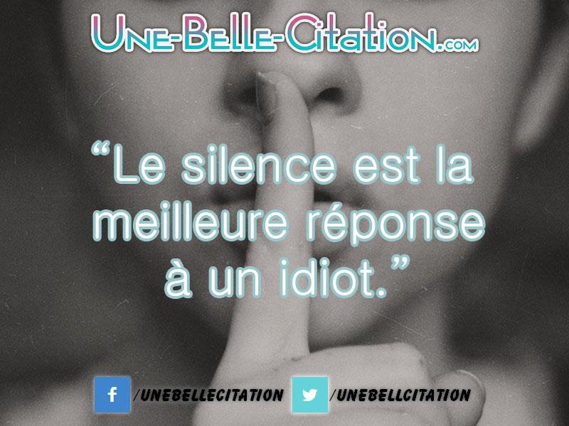 """""""Le silence est la meilleure réponse à un idiot."""""""