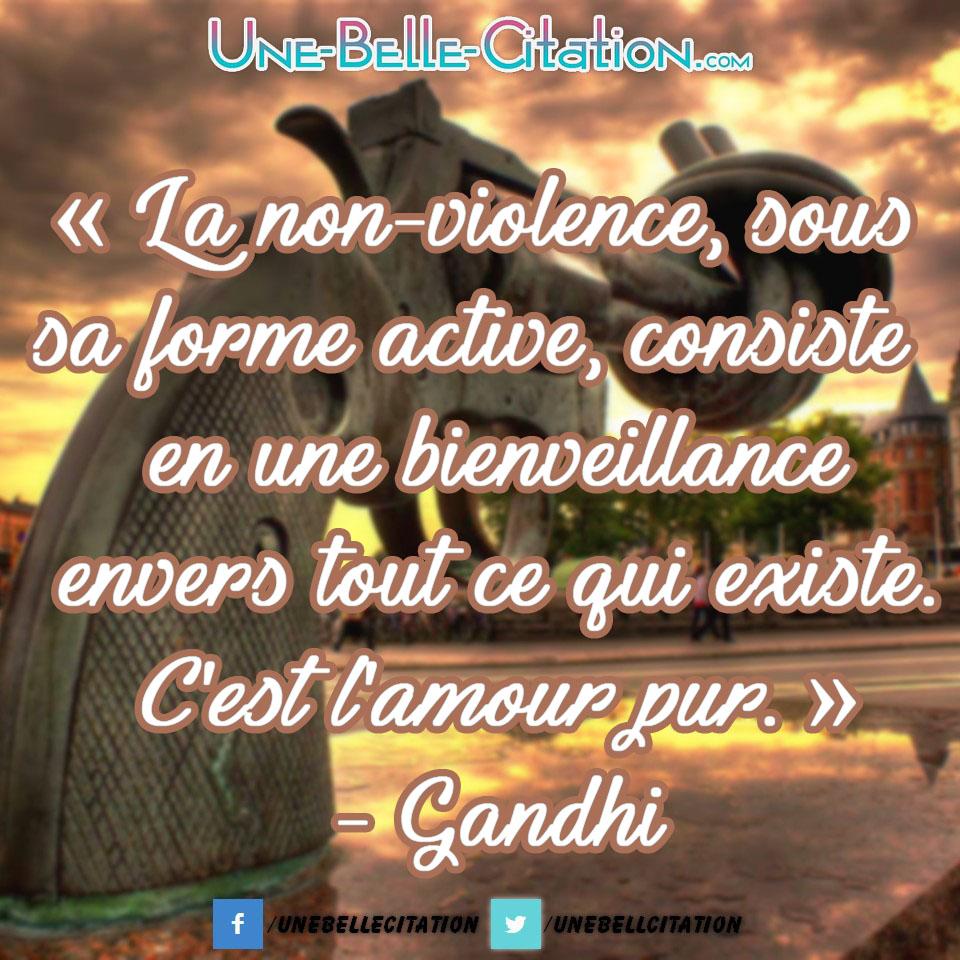 « La non-violence, sous sa forme active, consiste en une bienveillance envers tout ce qui existe. C'est l'amour pur. » – Gandhi